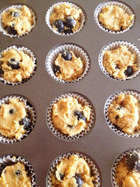 Blueberry_lemon_zest_protein_muffins