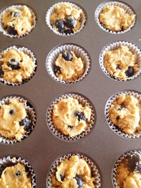 Blueberry_lemon_zest_protein_muffins