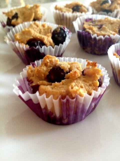 Blueberry_Lemon_Muffin_Protein_Bites
